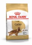 ! Royal Canin Cocker Adult Корм сухой для взрослых собак породы Кокер Спаниель от 12 месяцев, вес 3 кг.