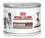 Royal Canin Recovery Корм влажный диетический для взрослых собак и кошек при анорексии и в период восстановления, вес 195 гр.