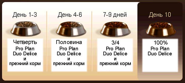 Duo Delice. Переход со старого корма