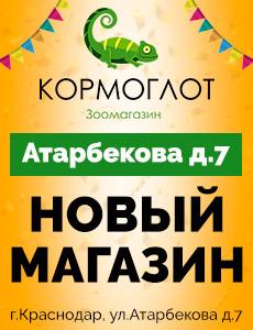 Открылся новый магазин на Атарбекова 7