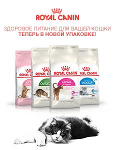 Royal Canin здоровое питание для вашей кошки